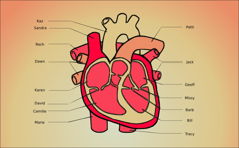 A diagram of my heart by John LeMasney via lemasney.com