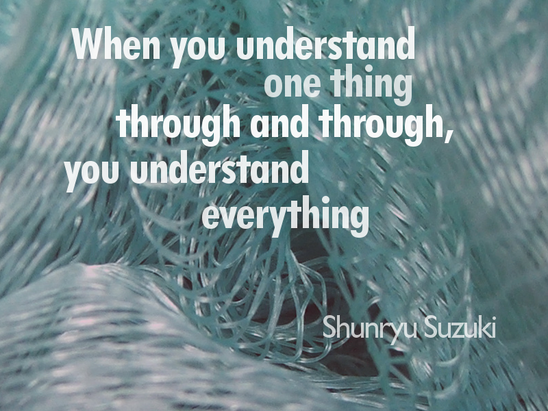 When you understand one thing through and through, you understand everything. cc-by lemasney