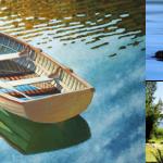 An idyllic lake scene by John LeMasney via 365sketches.org #cc #design #photo