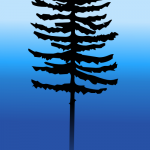 Tall tree in the blue morning mist by John LeMasney via 365sketches.org #tree #nature #creativecommons