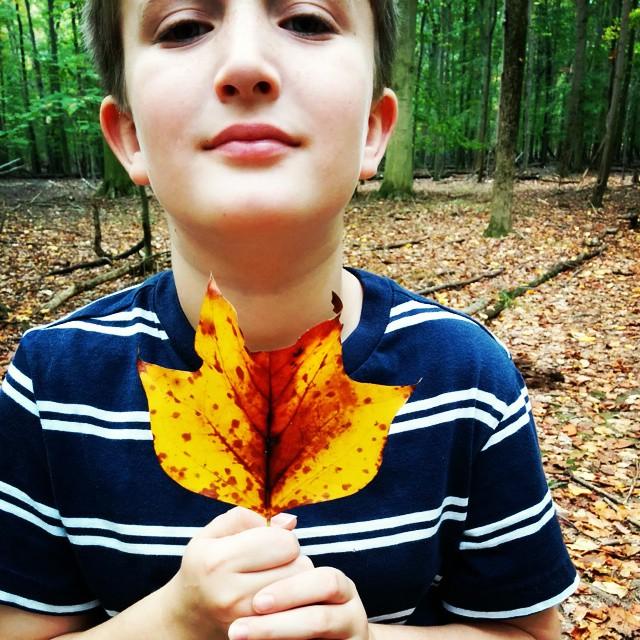 Jack with leaf by lemasney