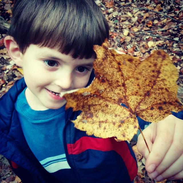 david with leaf (photo) by lemasney