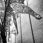 The Story of the Maple Seeds at the 2015 Princeton Parklet