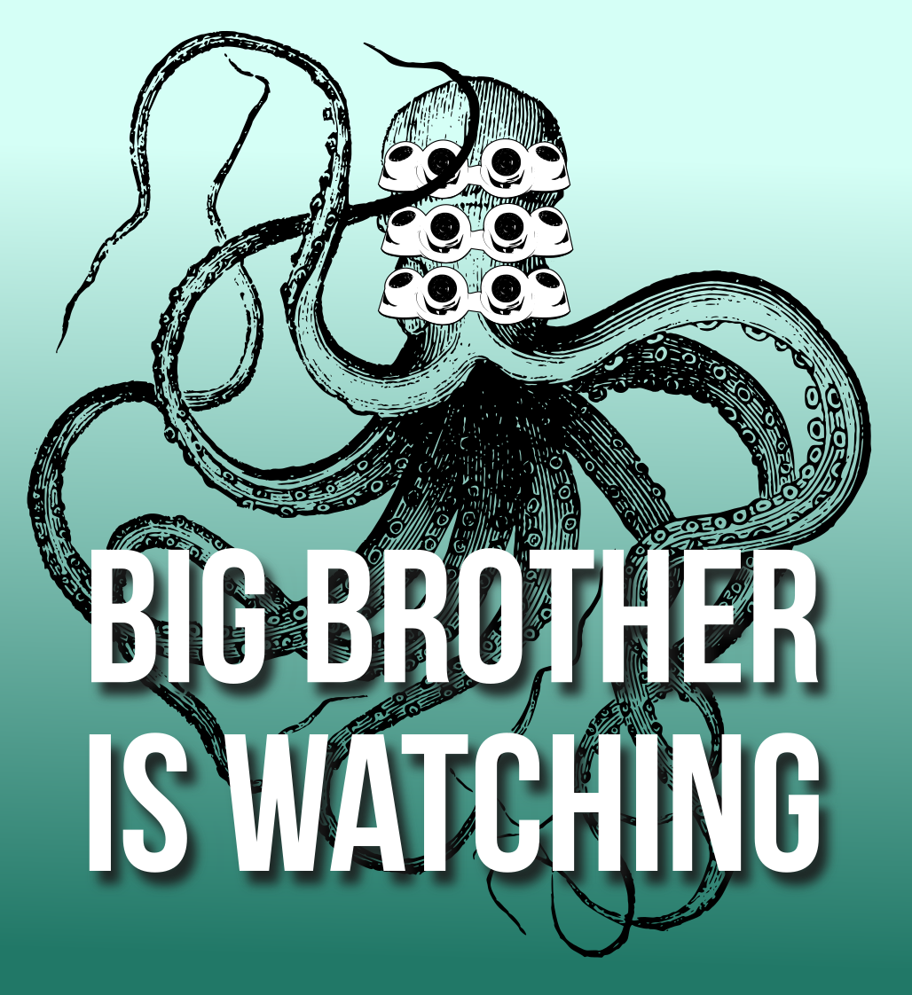 big brother is watching (lemasney, 2016)